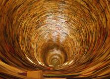 Castello di Govone Inaugurazione Biblioteca sezione esoterica